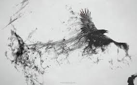 обои иллюстрация птицы животные монохромный художественное