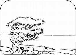 Kleurplaat Landschappen Animaatjesnl