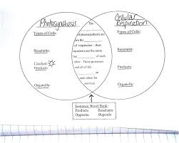 Venn Diagram Of Photosynthesis And Cellular Respiration