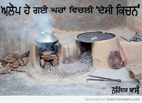 desi comments punjabi culture