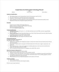 Resume Summary Example Entry Level