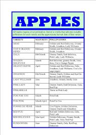 Apple Varieties Maturity Pollination Chart