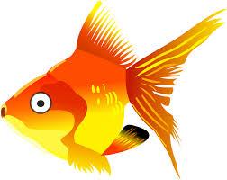 gold fish clip art. Modren Clip Cartoon Goldfish Inside Gold Fish Clip Art I