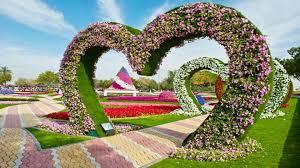 Full Hd Flowers Garden Photos