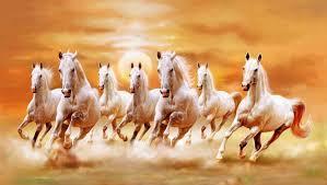 white horses. Plain Horses Wall1ders Vastu Seven White Horses Paper Print 18 Inch X 12 Inch Rolled In White Horses H
