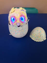 Hatchimals Chart Hatchimals Mystery Reviews In Electronic Toys For Kids
