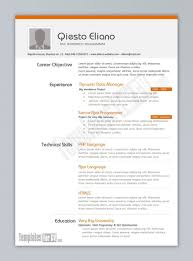 Template Free Download Cv Word Templates For Programmer