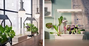 indoor gardening. IKEA Launches Indoor Garden That Can Grow Food All Year Round Gardening