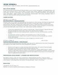 Real Estate Agent Resume Inspiration 2117 Download Real Estate Agent Resume Sample Diplomatic Regatta Real