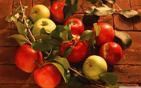 green and red apples. wide green and red apples
