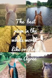 Beautiful Cowgirl Quotes Best of HOW DOES RIDING HORSES MAKE YOU FEEL COMMENT BELOW Animals