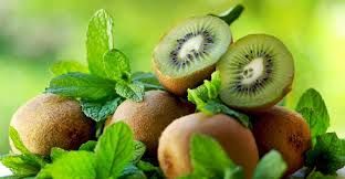 Resultado de imagem para benefícios do kiwi para a saúde