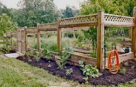 deer proof garden fence. How To Deer Proof Your Garden   30\u0027 X 50\u0027 Deer-proof And Fence