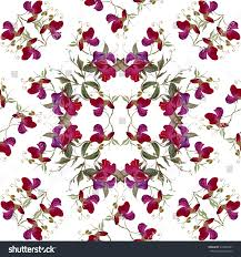 seamless fl pattern in modern style sweet pea on a white background watercolor painting