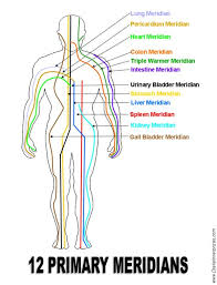 394 best qigong images on pinterest qi gong, martial arts and Meridian Lines Body Map Meridian Lines Body Map #47 meridian lines body map