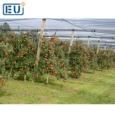 agrotextile garden anti hail netting structures system for gardens apple tree greenhouse in australia india