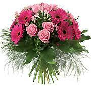 Image result for poczta kwiatowa legnica