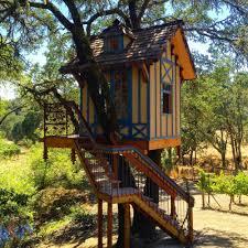 Tree House Photos O2 Treehouse