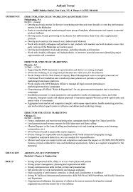 Director Strategic Marketing Resume Samples Velvet Jobs