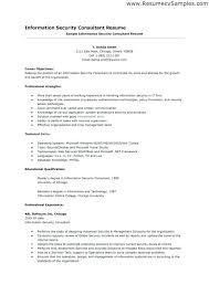 Information Security Consultant Resume Resume Template Information