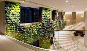 green wall office. large creatively designed living wall displayed in a head office green