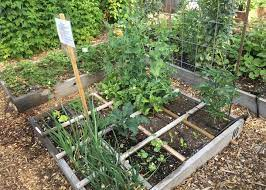 how to build a raised garden bed step