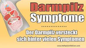 Symptome von Darmpilz, darm, wissen für Ihre