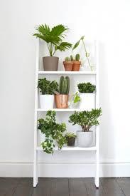 Winning Design Plant Shelf Ideas with White Wooden Plants Shelves and  Ladder Shape Plants Shelves