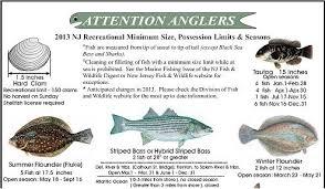 2013 Nj Saltwater Fishing Regulations Nj Saltwater