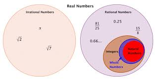Rational And Real Numbers