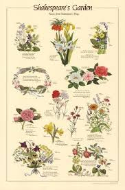 Shakespeares Garden Flowers From Plays Chart Poster