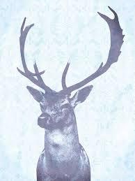 blue stag canvas print