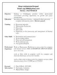 Sales Clerk Job Description Sample Resume Format For Sales Clerk