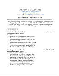 Social media resumes are now being used today for individuals who are interested in applying for social media related job positions since social media jobs are now being a trend in the world of. Digital Marketing Manager Resume Example Free Download