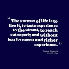Life Experience Quotes Magnificent 48 Wise Quotes About Life Experiences Pelfusion