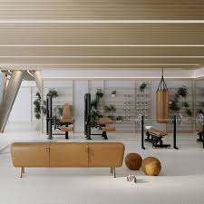 home gym furniture. Living Room Fitness Small Home Gyms Ideas Gym Design On Decorate Furniture For Y