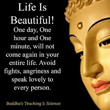 Good Morning Buddha Quotes In English Daily Motivational Quotes