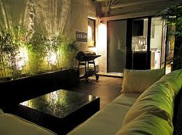 cool apartment decorating ideas. Perfect Ideas GTA Apartment Interiors Interior Apartments Cheap Small Loft  Decorating Ideas With Bamboo Tree And Cool Lightning Seductive  E