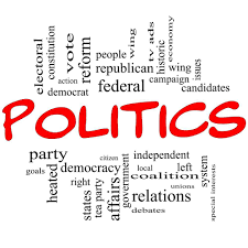 essay on the criminalization of politics
