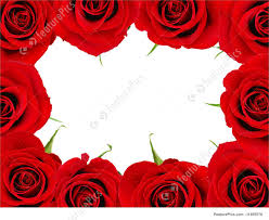 Red Photo Frames Red Rose Frame Picture