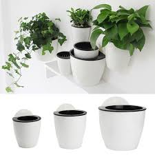 self water flower pot plant planter