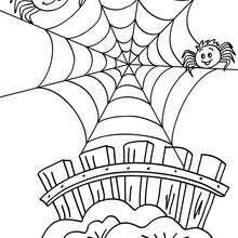 Small Picture Spider on its web coloring pages Hellokidscom