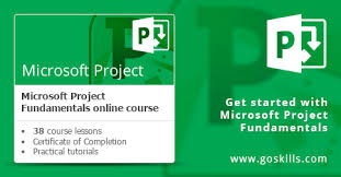 Microsoft Project Fundamentals Online Training Course