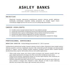 Job Resume Format Word Document
