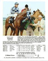 2015 Belmont Stakes Chart Secretariat And The Chart Of The Belmont Stakes Horses