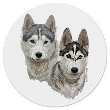 Коврик для мышки (круглый) Собаки Хаски. #278857 от Павел ...