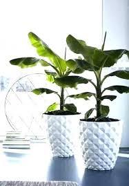 modern indoor plant pots large planters planter white diamond structure d outdoor flower home depot pot
