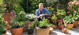 best plants for pots home garden