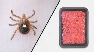 Meat Allergy Caused by Tick Bites - Consumer Reports