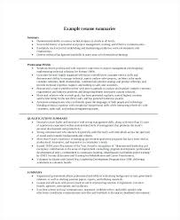 How To Compose A Resume Example For Entrepreneur